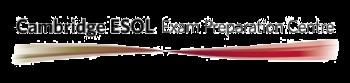 Logo de centro oficial examinador cambridge
